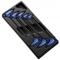 Module d'outils EXPERT 8 clés males 6 pans en T - plateau plastique