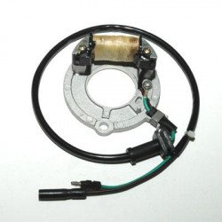 Stator ELECTROSPORT Honda CR80R/85R/RB