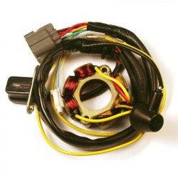Stator ELECTROSPORT avec bobine d'éclairage Kawasaki KX250F/Suzuki RM-Z250
