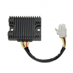 Régulateur ELECTROSPORT Can Am DS650/X/Baja