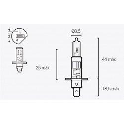 Ampoule V PARTS H1 12V/55W culot P14.5S 10pcs