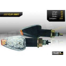 Paire de clignontants, tige courte noire, ampoule LED
